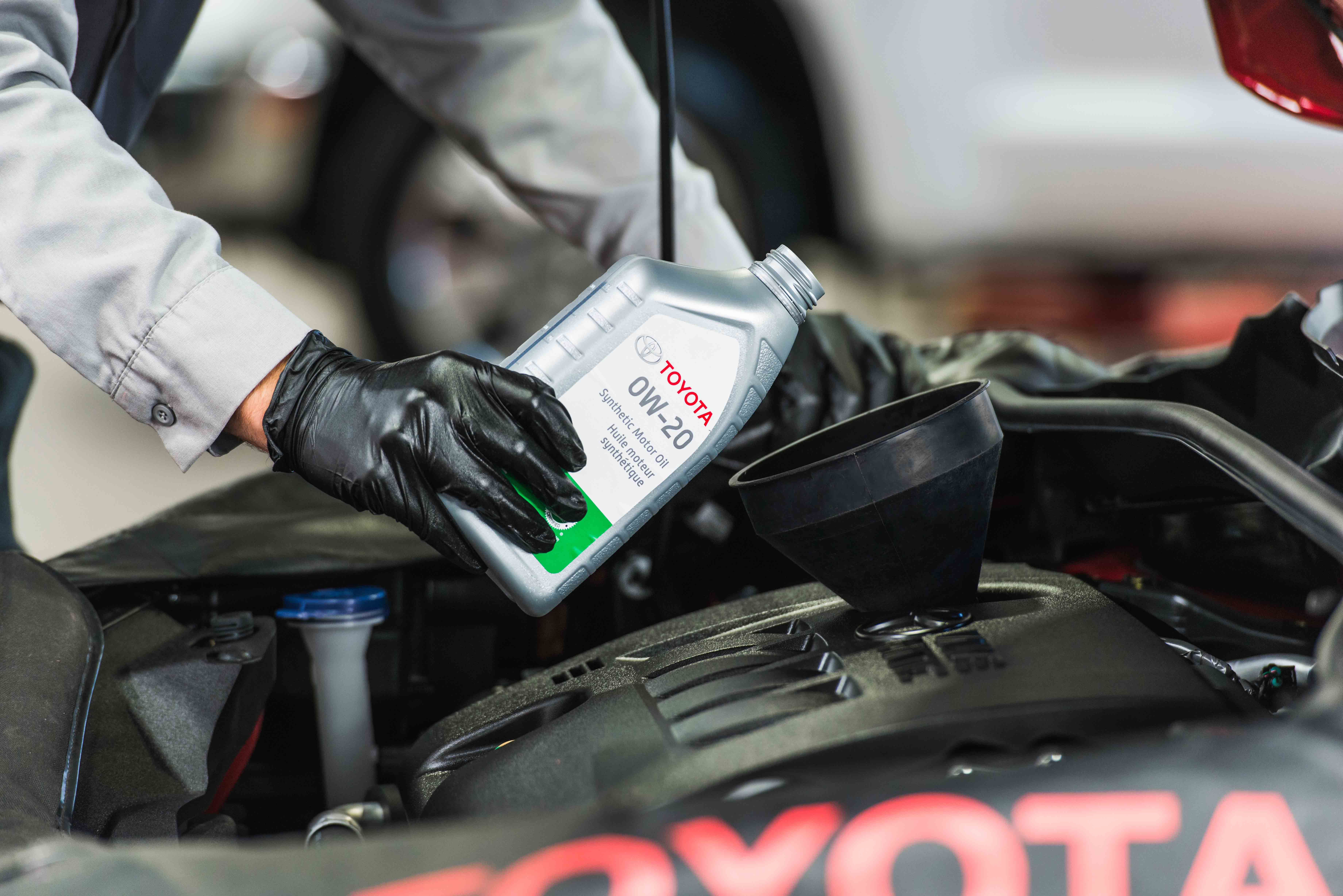 Synthetic Oil Change Starting at $69.93!